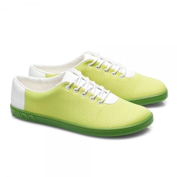 QARO Light Green
